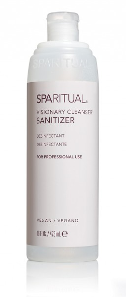 Visionary Cleanser